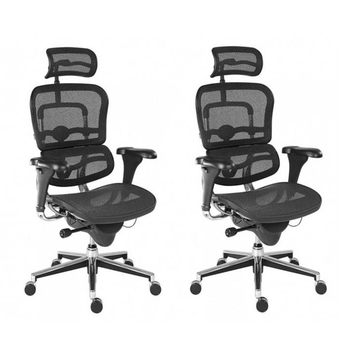 ANTARES Kancelářská židle - křeslo ERGOHUMAN Antares - 2 ks